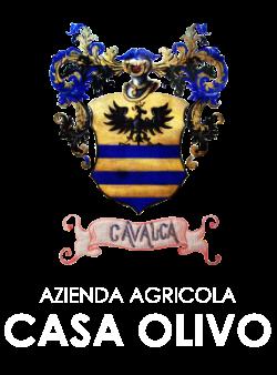 CASA OLIVO LOGO